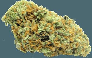 Sativa Strain - Green Crack - THC - CBD